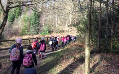 Year 3 Enjoy The Winter Warmer Project at Chopwell Woods.